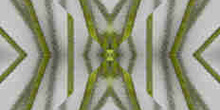 Ramas verdes, con fantasía en cristal