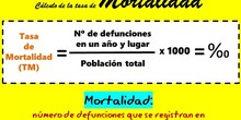 Fórmula para el cálculo de la Tasa de Mortalidad