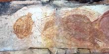 Pinturas rupestres de animales, Kakadu, Australia