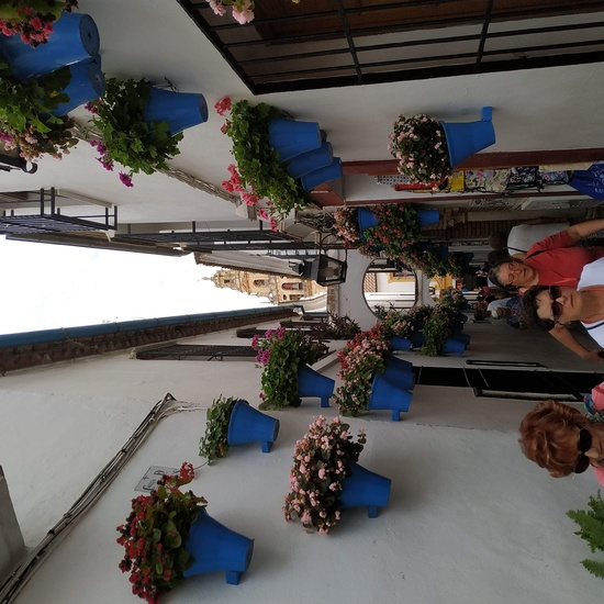 Córdoba 2019 (52)