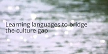 A language learning metaphor: learning languages to bridge the culture gap