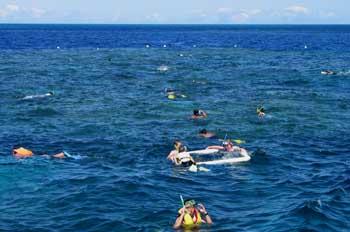 Buceando en la Barrera del Coral, Australia
