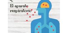 Tema 3-Aparato respiratorio
