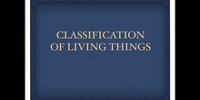 SECUNDARIA - 1º ESO - CLASSIFICATION OF LIVING THINGS - BIOLOGY - FORMACIÓN