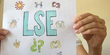 ¿Qué es la LSE?