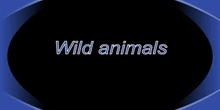 Wild animals and abilities
