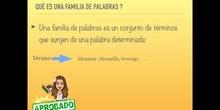 PRIMARIA - 5 - LAS FAMILIAS DE PALABRAS - LENGUA