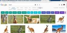 Ejemplo de búsqueda de imagen CC en Google