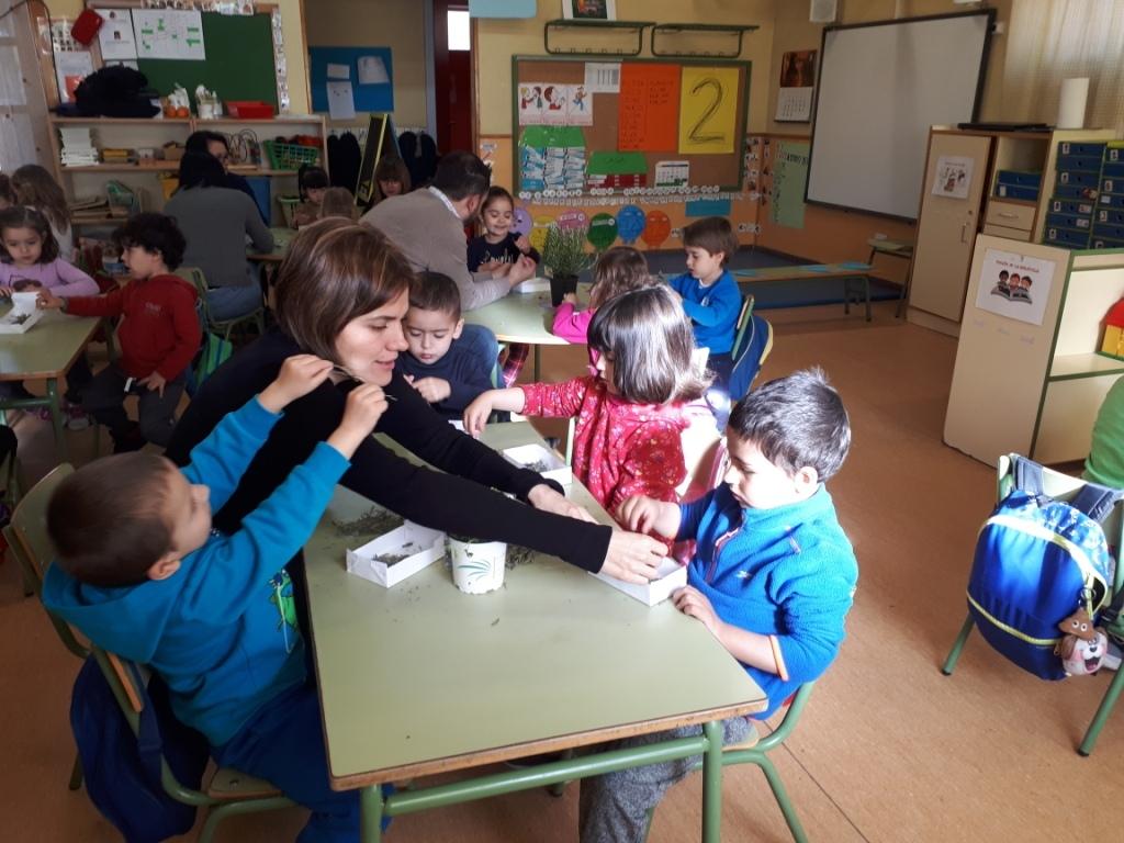 TALLER DE PLANTAS - 3 AÑOS INFANTIL 11