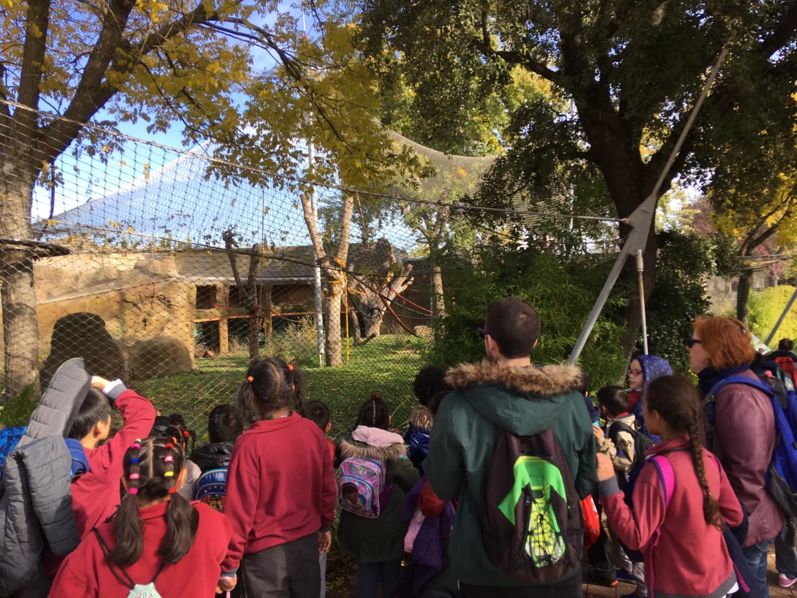 Excursión al zoo 5 años, 1º y 2º Luis Bello 19