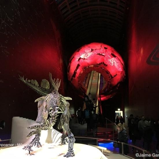 49 Natural History Museum #5