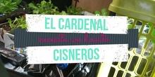El Cardenal Cisneros necesita un huerto