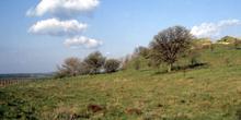 Colina de Troya, Turquía