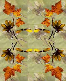 Simetría de tono otoñal sobre estampado