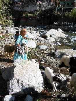 Pastora de ovejas cruzando un río, Marruecos