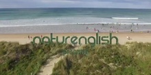 Surf Camp in Cantabria
