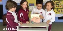 INFANTIL - 4AÑOS B - ANIMACION A LA LECTURA