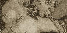 Los Caprichos en detalle 24