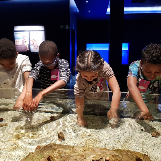 Fotos Aquarium Xanadú 3ºB 3