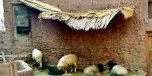 Pesebre en Skoura, Marruecos