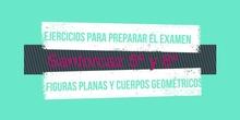Ejercicios preparacion examen 5 y 6º figuras planas