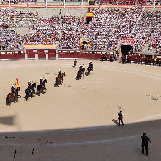 Las Ventas 2019 4