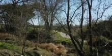Salvemos el arroyo Butarque
