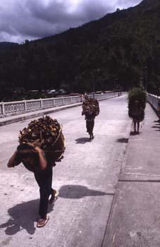 Porteadores de leña en Pemayangste, Sikkim, India