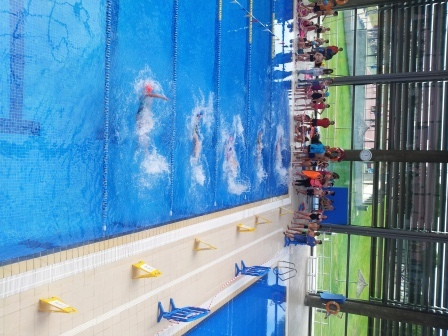 2017_03_28_Olimpiadas Escolares_Natación_Fernando de los Rios 2