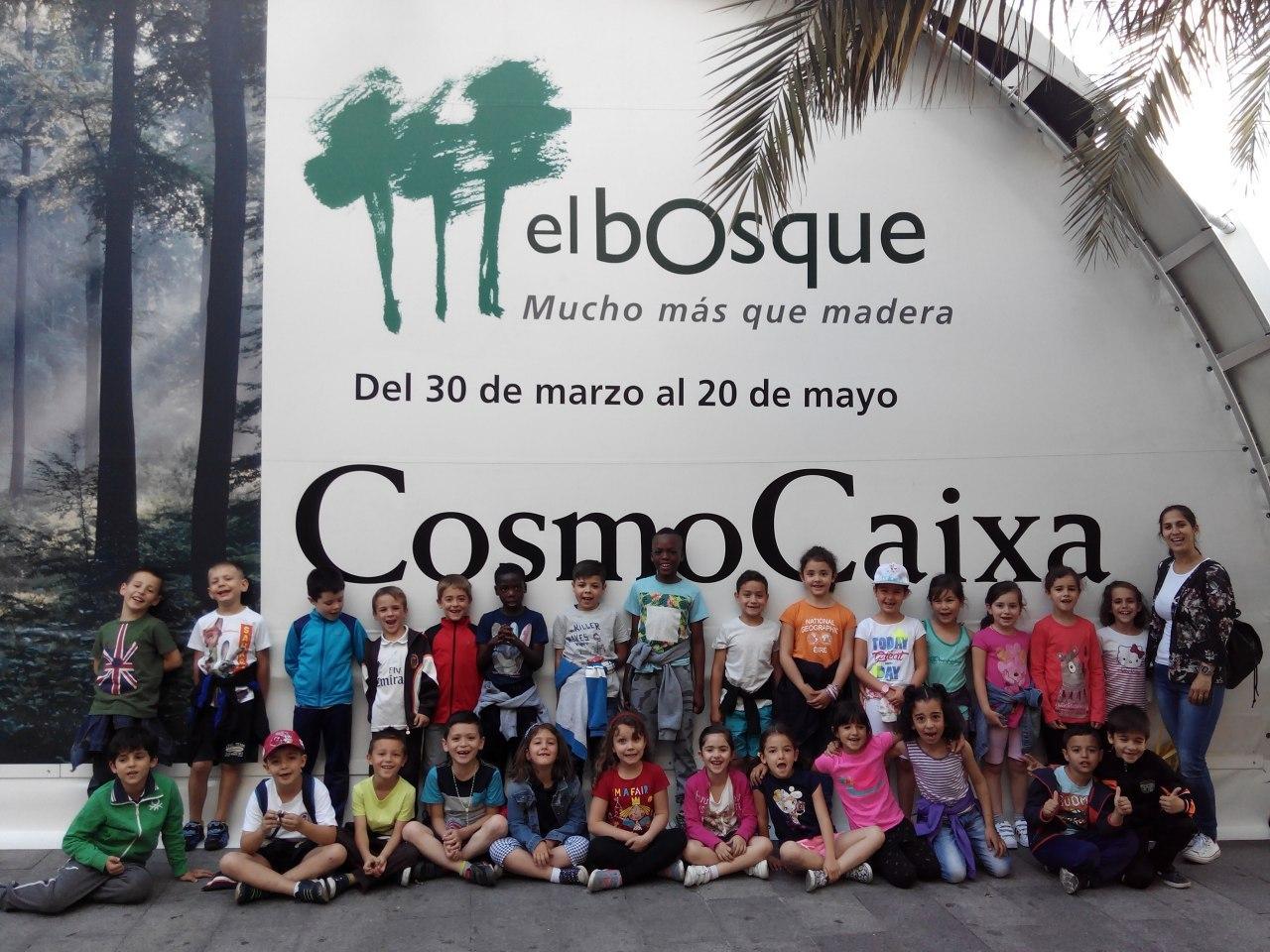 Visita a la exposición El Bosque. 1º 2º Primaria. CEIP Pinocho. 2016/17 19