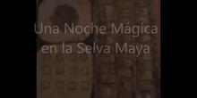 Una noche mágica en la selva maya