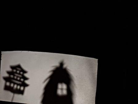 Los pulpos y las sombras chinas 29