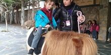 Excursión a la granja (Infantil) 17