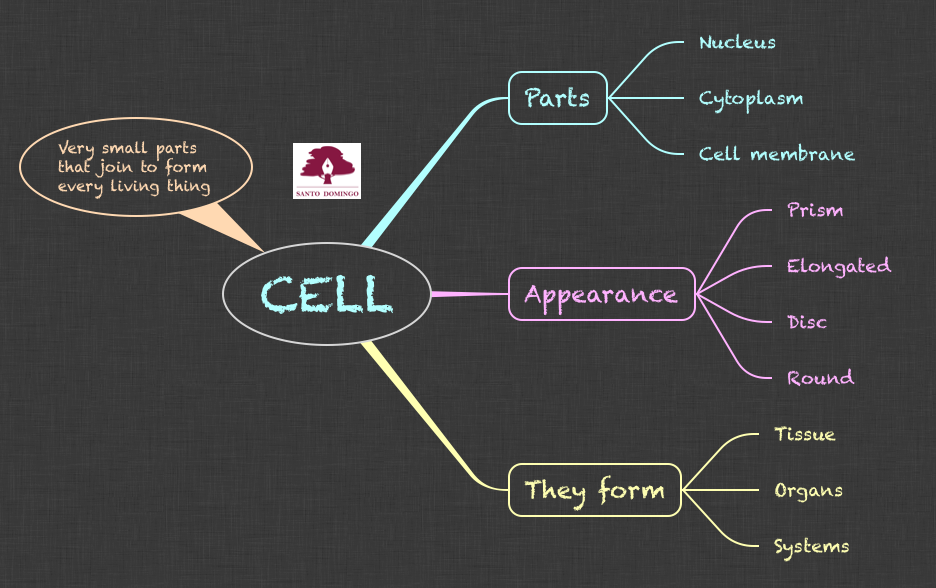 NS_CELL_5