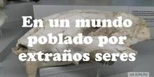 PALEONEWS: CARBONÍFERO