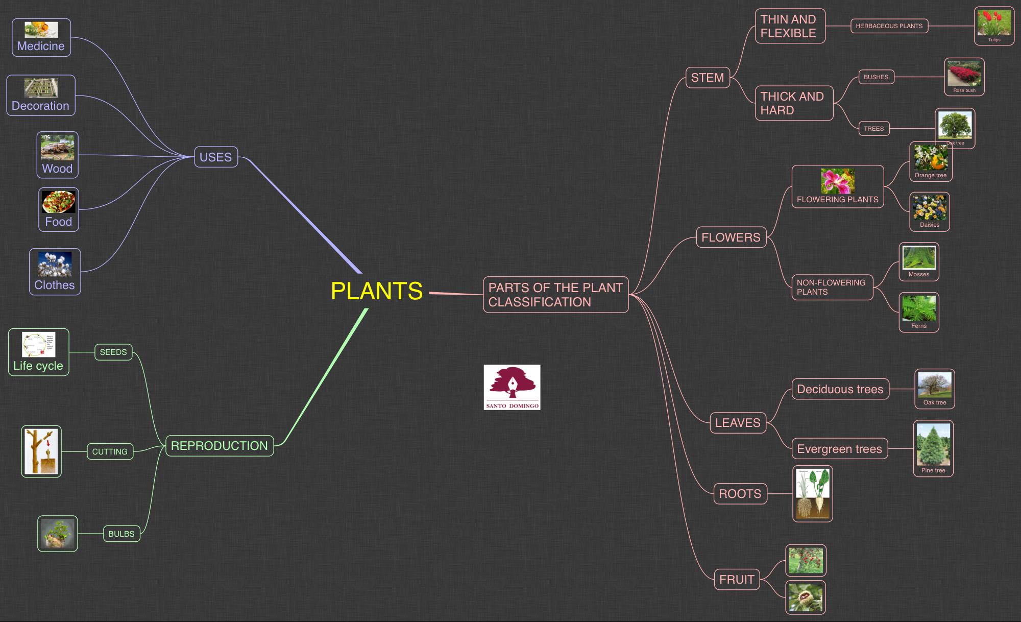 NS_PLANTS_2