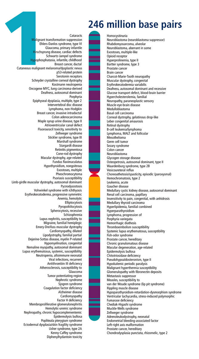 Patologías genéticas