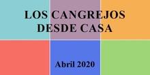 LOS CANGREJOS DESDE CASA: EMOCIONES