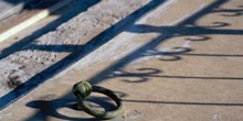 Sombra de verja, Cuba