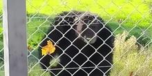 Visita al Centro de Recuperación de Primates 2020