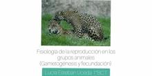 Fisiología de la reproducción en los grupos animales (gametogénesis y fecundación)