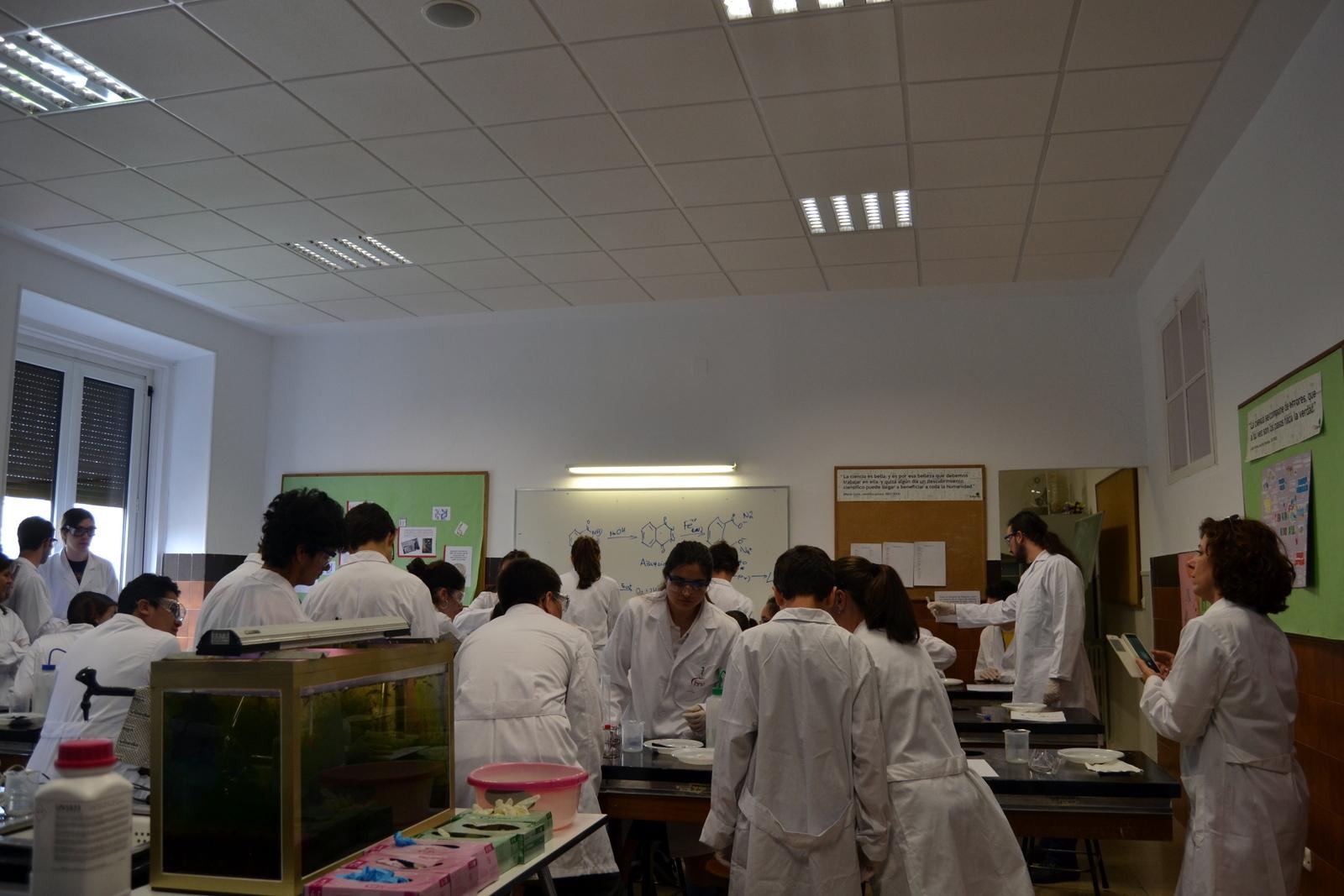 Proyecto de Aprendizaje y Servicio 16
