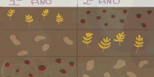 Primaria_6º_Las transformaciones agrícolas_Sociales_Ainara