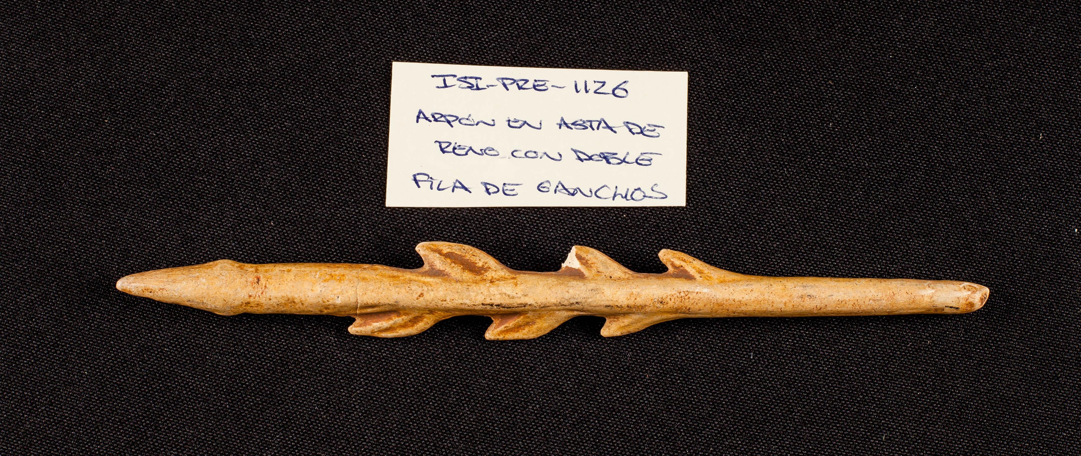 IES_SANISIDRO_MUSEO_Prehistoria_024