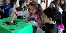 Quinto A celebra Halloween_CEIP Fernando de los Rios_Las Rozas 4
