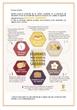 Infografía sobre el desayuno saludable