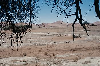Cobijo en el desierto, Namibia