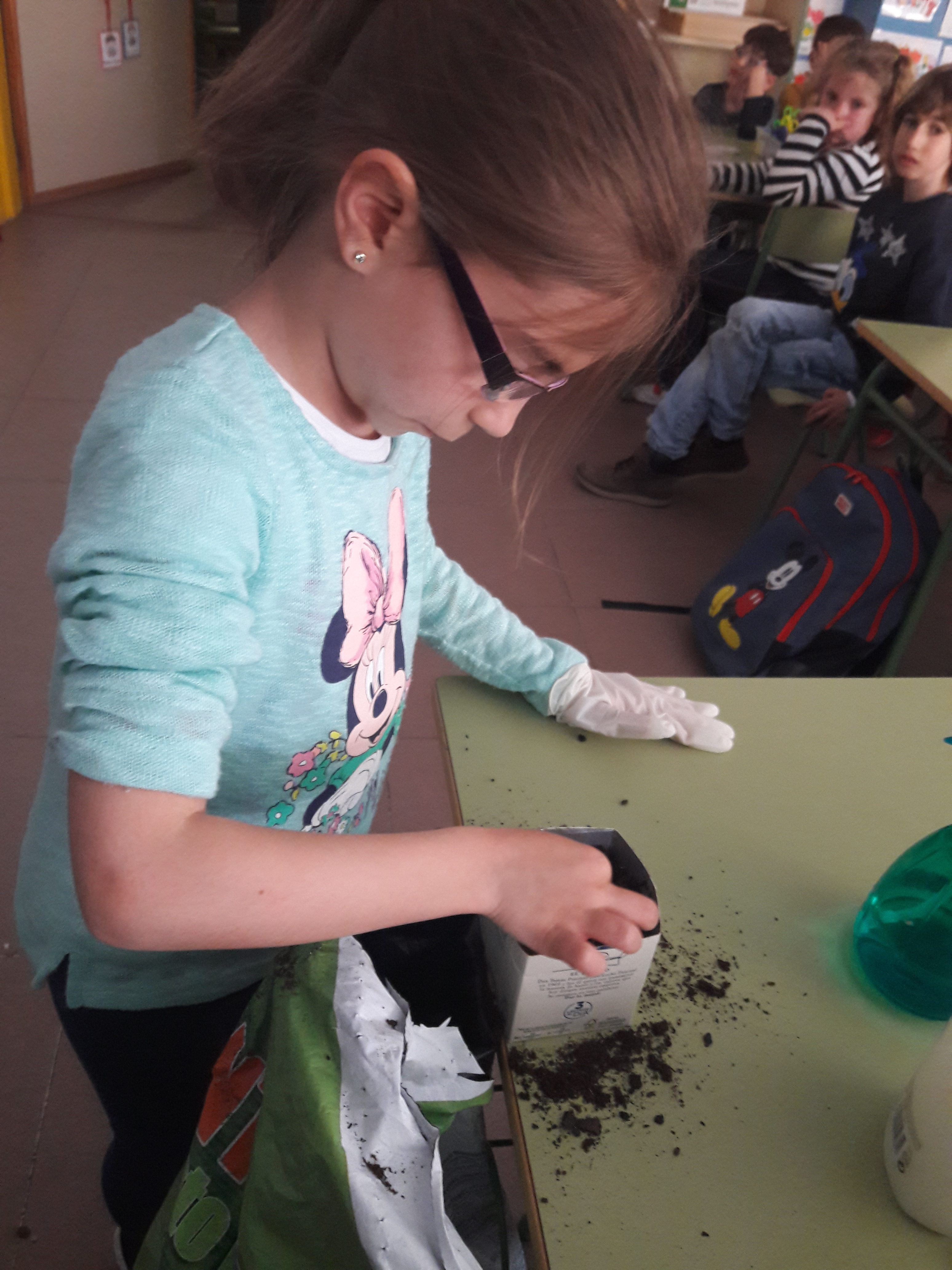 We grow plants in the classroom 7