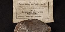 IES_SANISIDRO_MUSEO_Prehistoria_008