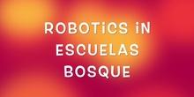 ROBOTICS IN ESCUELAS BOSQUE